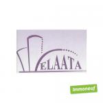 Immobilière EL AATA